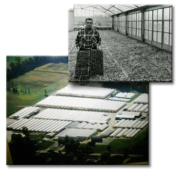 Schwartz Greenhouse & Garden Center history