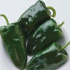 Pepper,Ancho San Martin