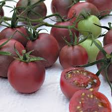 Tomato, Chocolate Cherry