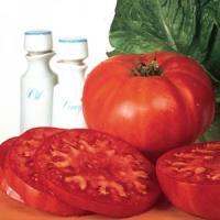 Tomato, Supersteak