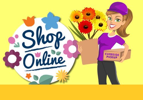 Shop Online at Schwartz Greenhouse